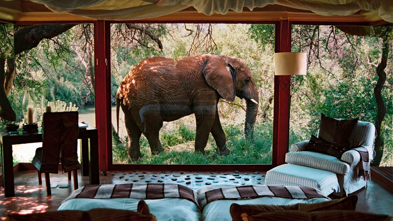 Top 10 Most Luxurious Safari Lodges In South Africa The